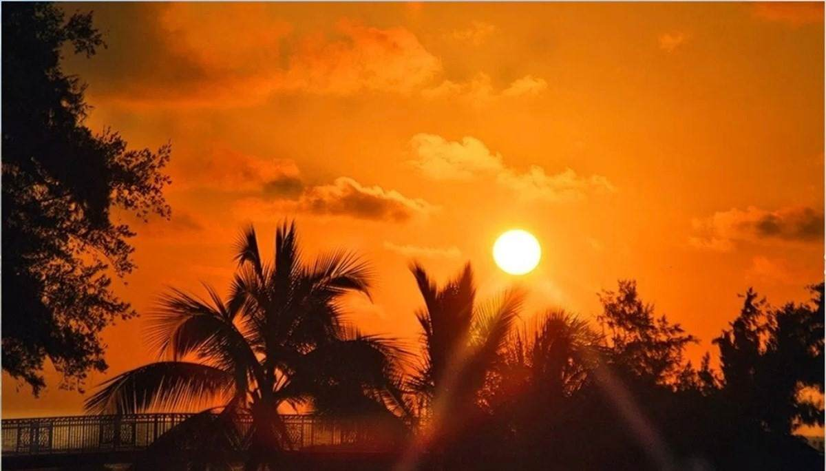 https://bt-photos.global.ssl.fastly.net/hawaii/orig_boomver_1_648931-2.jpg