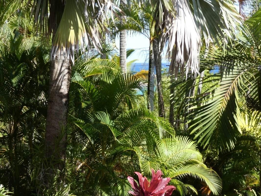 https://bt-photos.global.ssl.fastly.net/hawaii/orig_boomver_1_648956-2.jpg