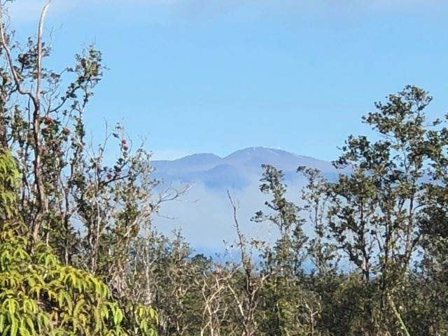 Ohialani Rd, Volcano, HI 96785 (MLS #648988) :: Aloha Kona Realty, Inc.