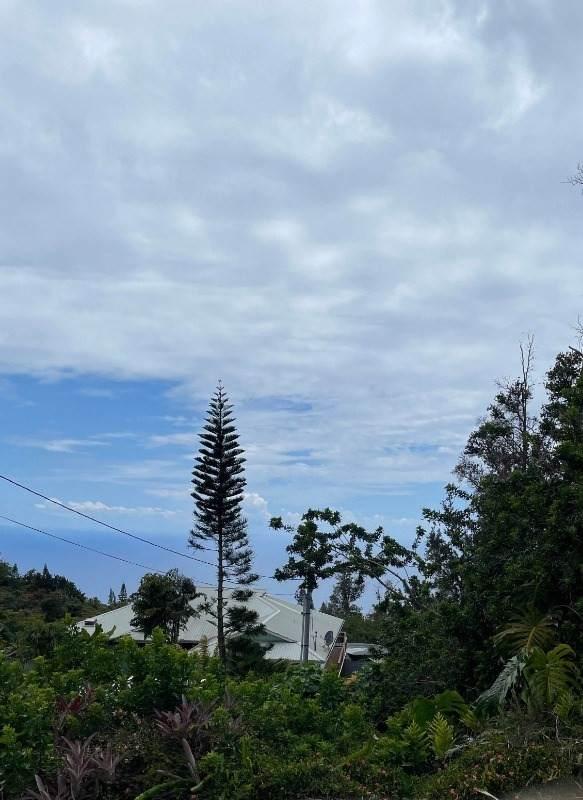 https://bt-photos.global.ssl.fastly.net/hawaii/orig_boomver_1_649044-2.jpg