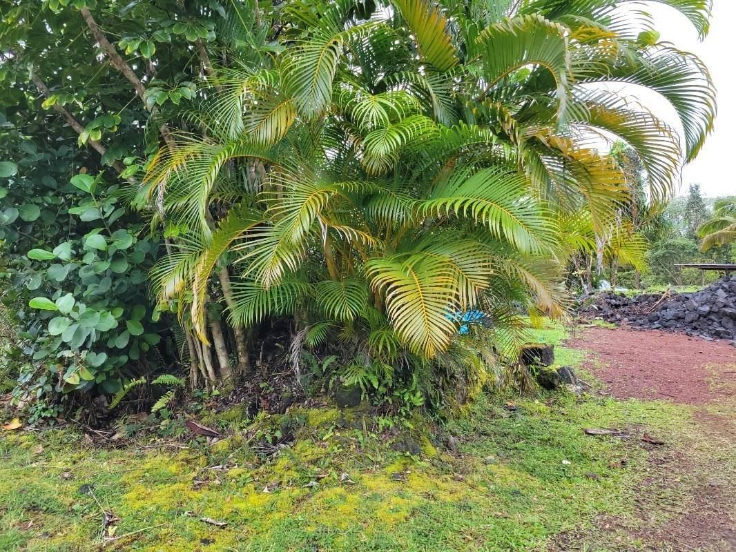 https://bt-photos.global.ssl.fastly.net/hawaii/orig_boomver_1_649066-2.jpg
