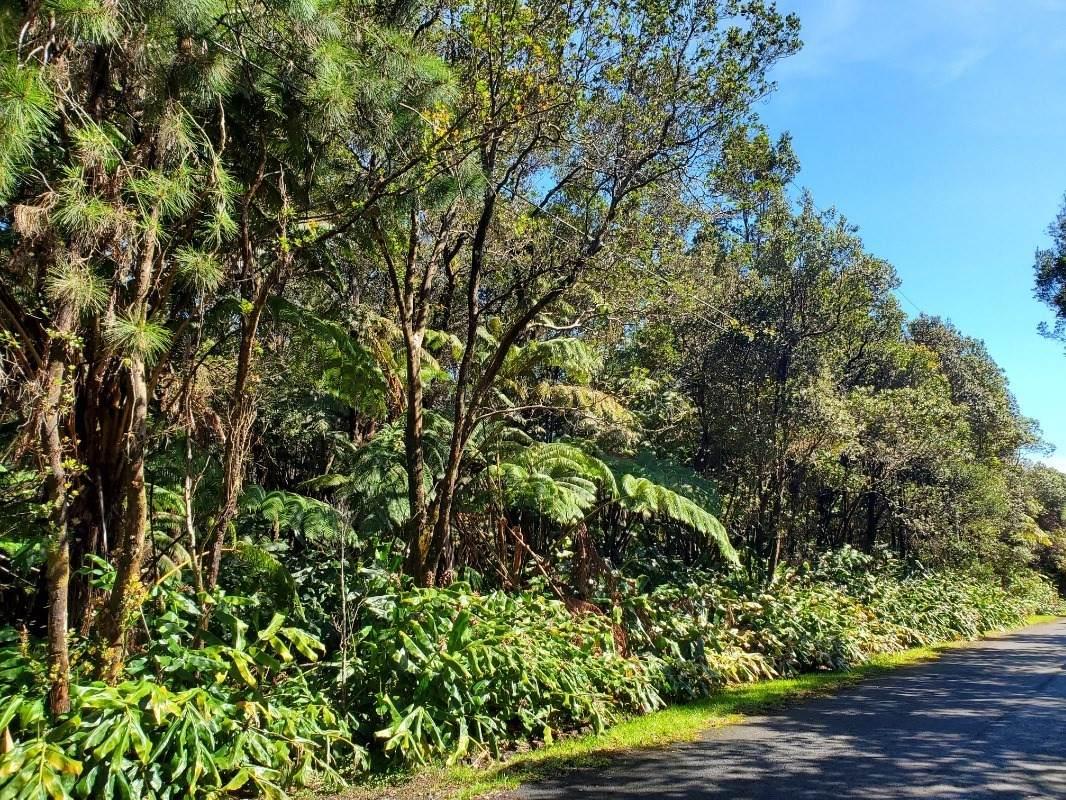 https://bt-photos.global.ssl.fastly.net/hawaii/orig_boomver_1_649100-2.jpg