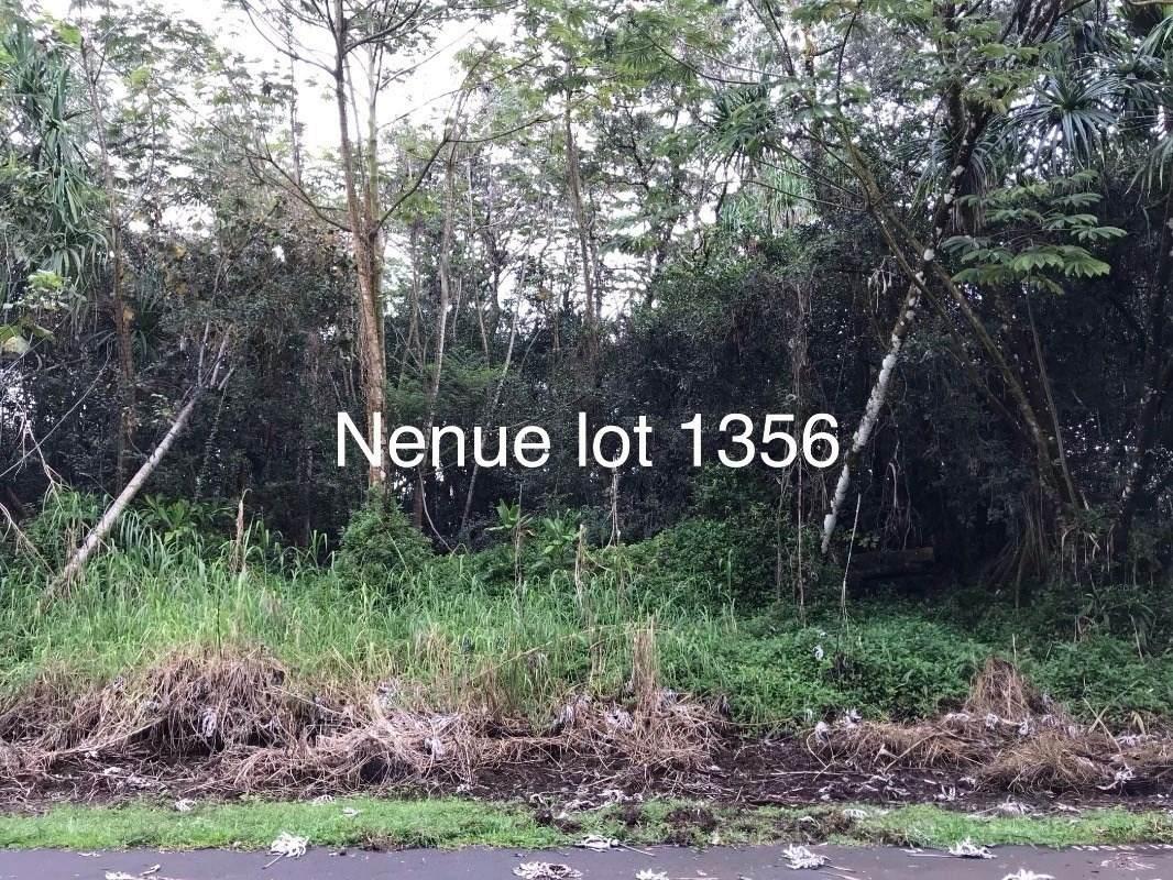 Nenue St - Photo 1