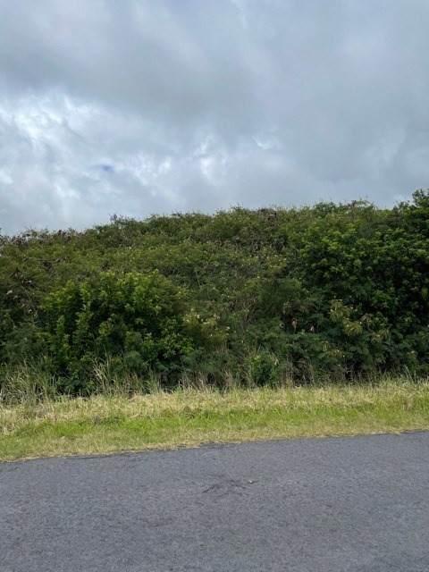 Hekau St, Naalehu, HI 96772 (MLS #649154) :: Aloha Kona Realty, Inc.