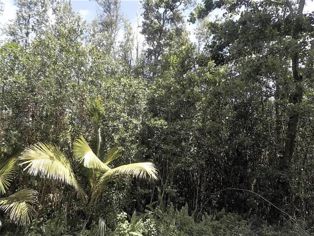 https://bt-photos.global.ssl.fastly.net/hawaii/orig_boomver_1_649177-2.jpg