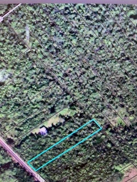N Kulani Rd, Mountain View, HI 96771 (MLS #649201) :: LUVA Real Estate