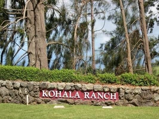 59-256 Ou Place, Kamuela, HI 96743 (MLS #649224) :: Aloha Kona Realty, Inc.