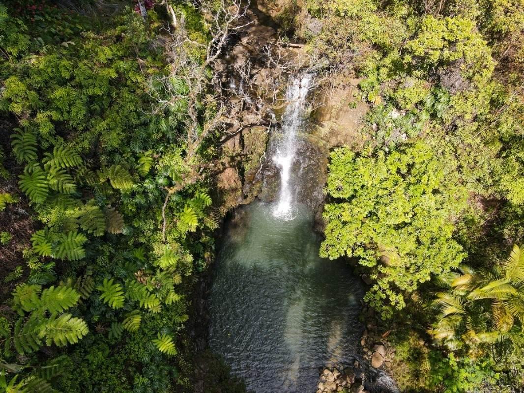 https://bt-photos.global.ssl.fastly.net/hawaii/orig_boomver_1_649366-2.jpg