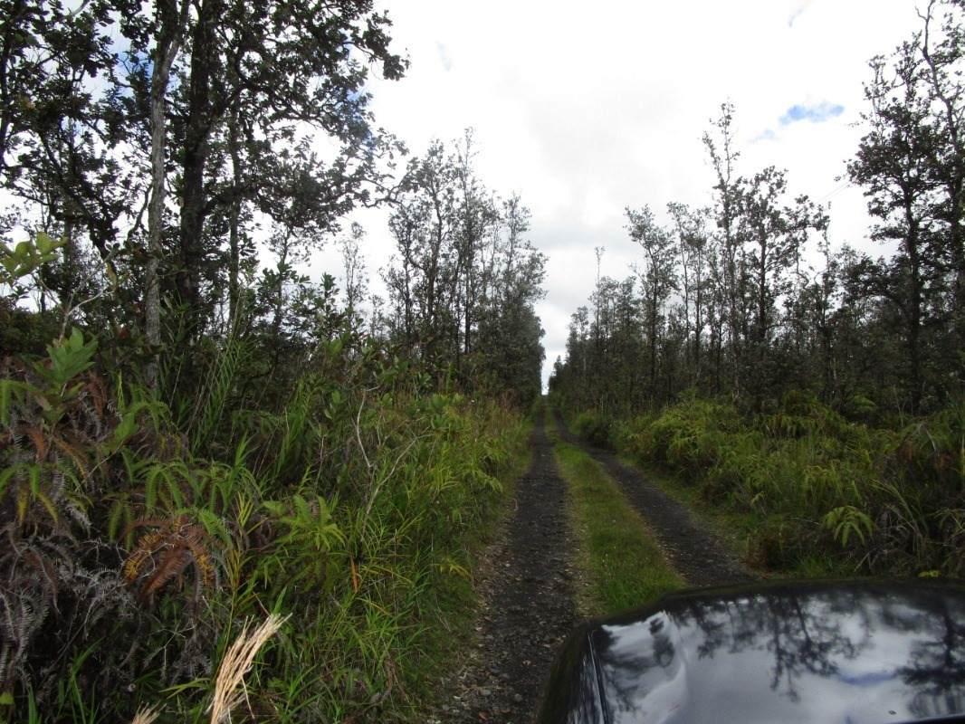 https://bt-photos.global.ssl.fastly.net/hawaii/orig_boomver_1_649498-2.jpg