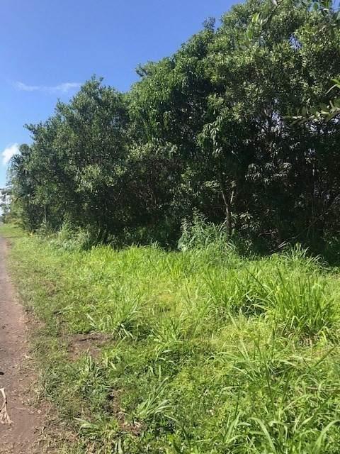 11TH AVE (KIKA), Keaau, HI 96749 (MLS #650028) :: Hawai'i Life