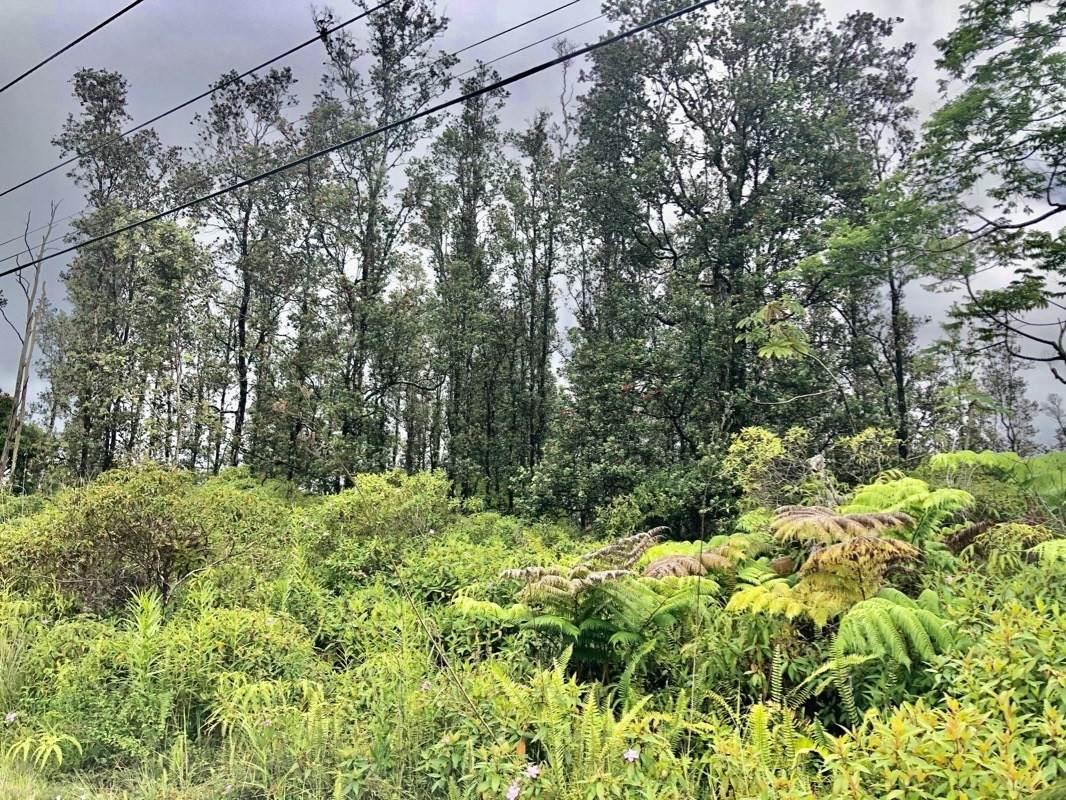 https://bt-photos.global.ssl.fastly.net/hawaii/orig_boomver_1_650088-2.jpg