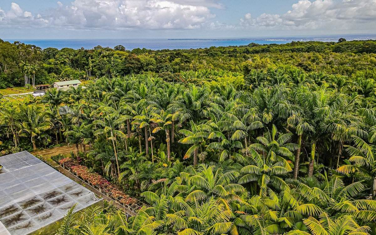 27-2760 Hawaii Belt Rd - Photo 1