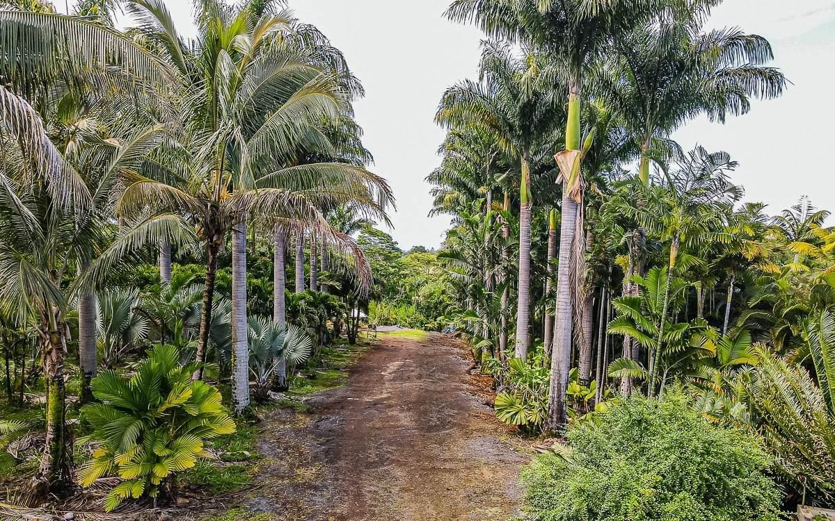 https://bt-photos.global.ssl.fastly.net/hawaii/orig_boomver_1_650148-2.jpg