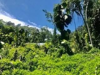 https://bt-photos.global.ssl.fastly.net/hawaii/orig_boomver_1_650158-2.jpg