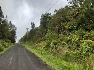 Kokokahi Rd, Volcano, HI 96785 (MLS #650307) :: Iokua Real Estate, Inc.