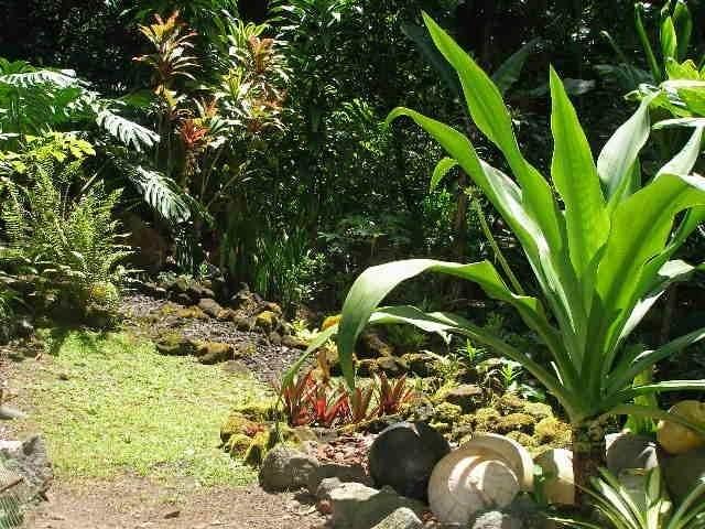 https://bt-photos.global.ssl.fastly.net/hawaii/orig_boomver_1_650324-2.jpg