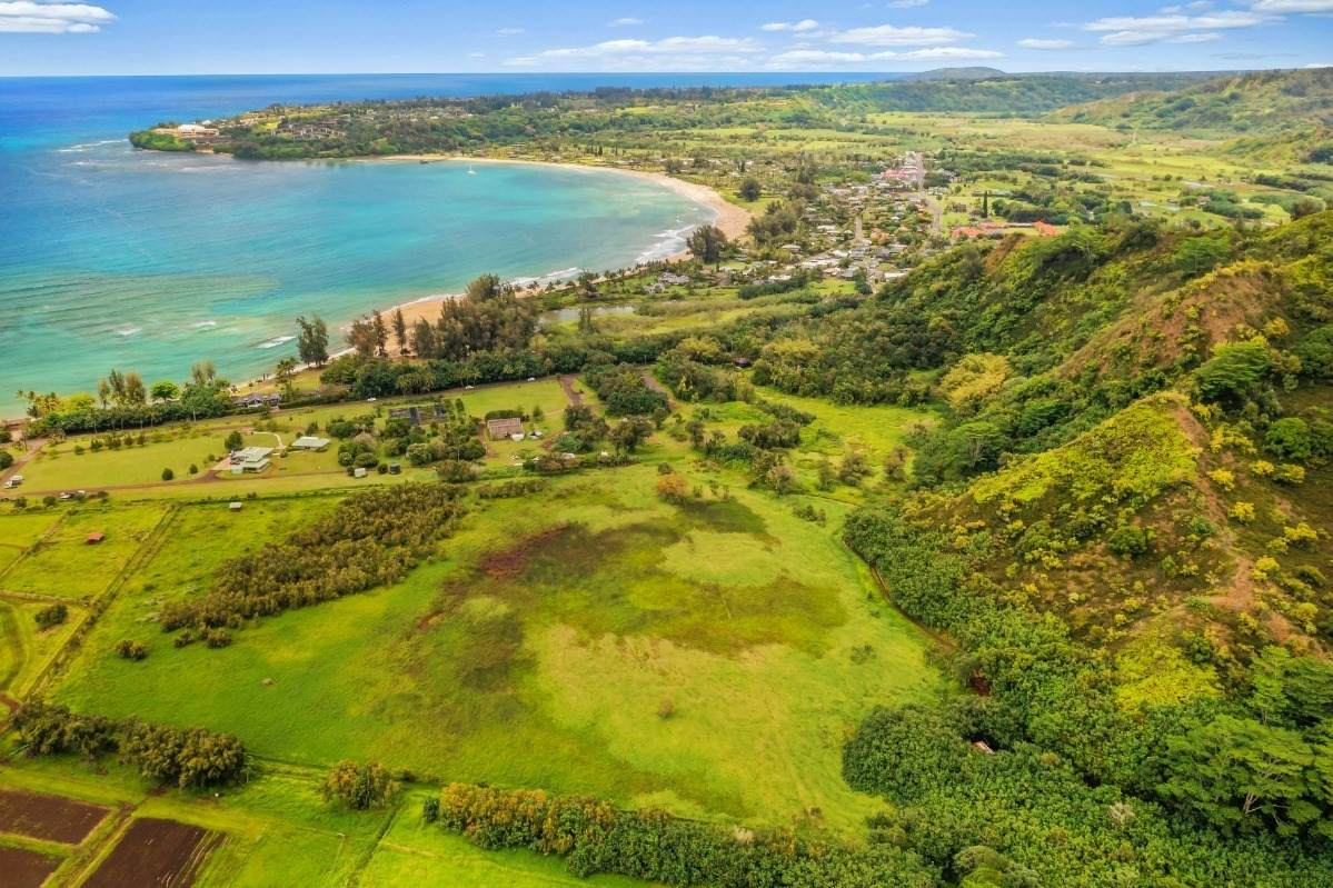 https://bt-photos.global.ssl.fastly.net/hawaii/orig_boomver_1_650358-2.jpg