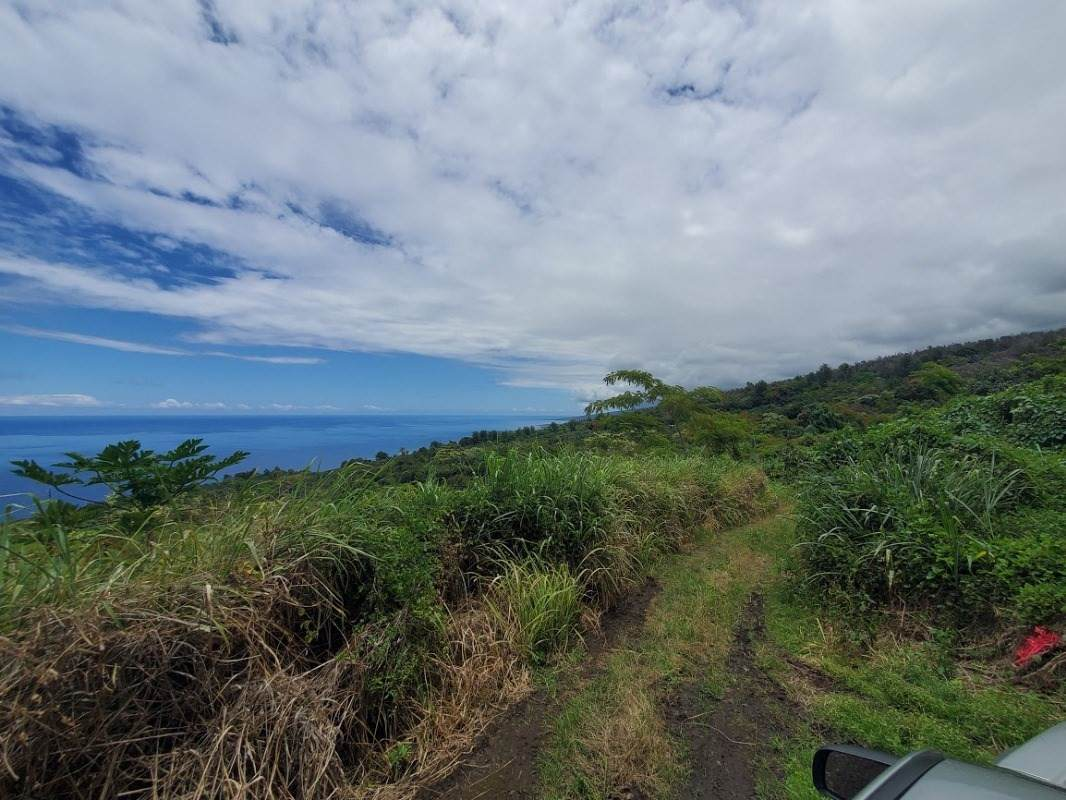 https://bt-photos.global.ssl.fastly.net/hawaii/orig_boomver_1_650376-2.jpg