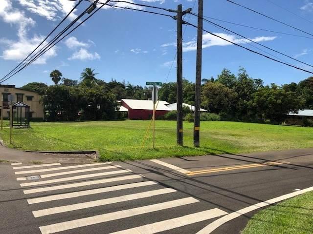 54-3887 Akoni Pule Hwy, Kapaau, HI 96755 (MLS #650380) :: Corcoran Pacific Properties