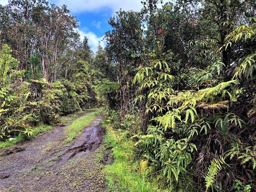 https://bt-photos.global.ssl.fastly.net/hawaii/orig_boomver_1_650434-2.jpg