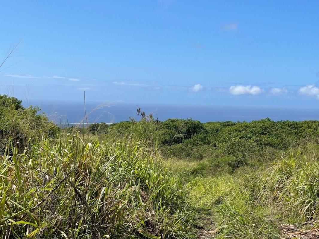 https://bt-photos.global.ssl.fastly.net/hawaii/orig_boomver_1_650476-2.jpg