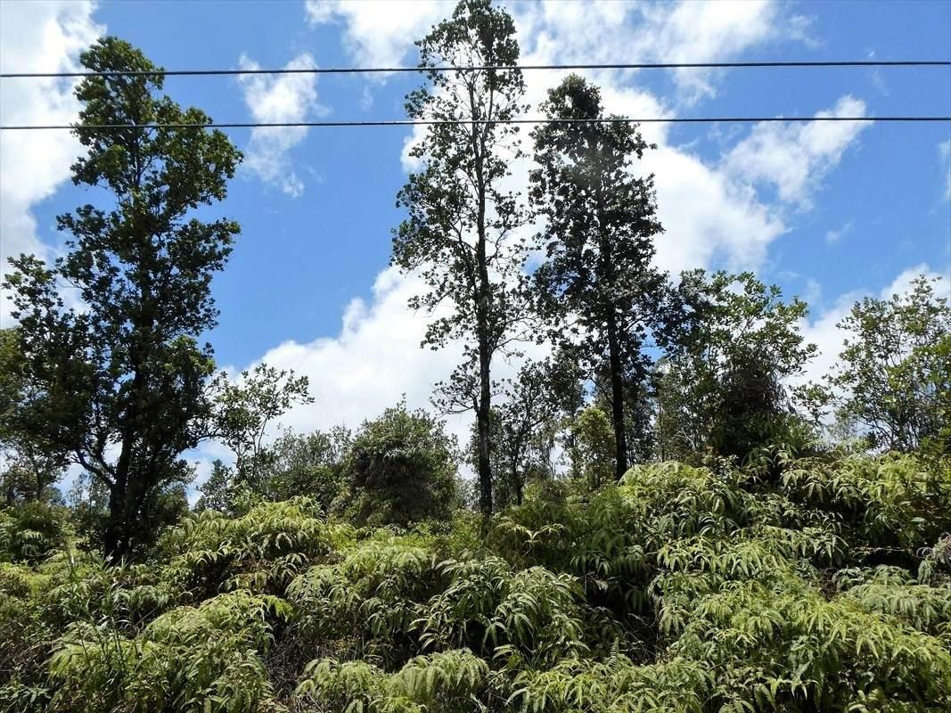 Road 1 (Uhini Ana) - Photo 1