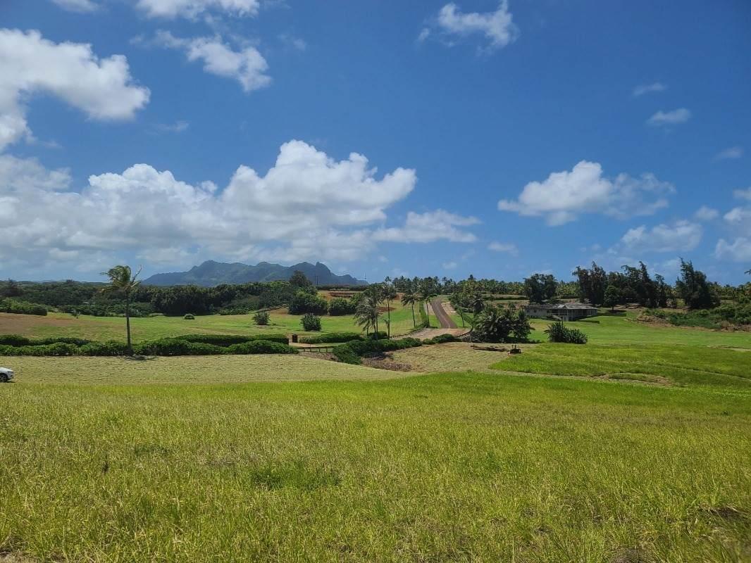 https://bt-photos.global.ssl.fastly.net/hawaii/orig_boomver_1_650481-2.jpg