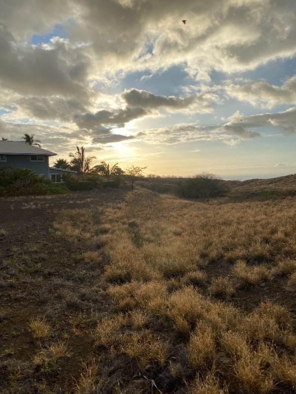 Kokee Pl, Waikoloa, HI 96738 (MLS #650572) :: Iokua Real Estate, Inc.
