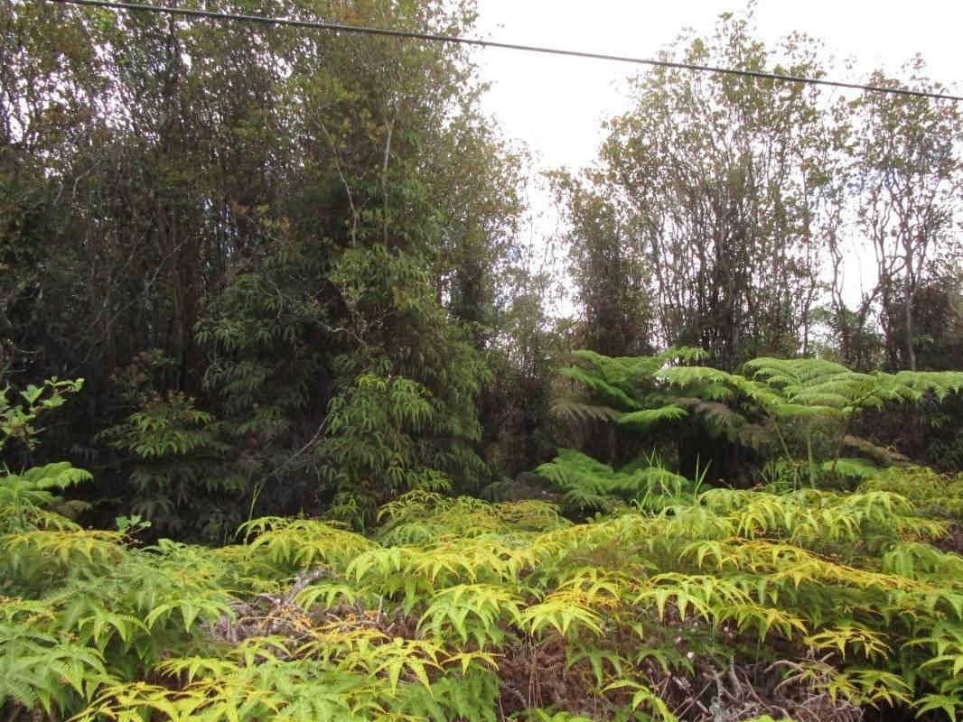 Road 3 - Photo 1