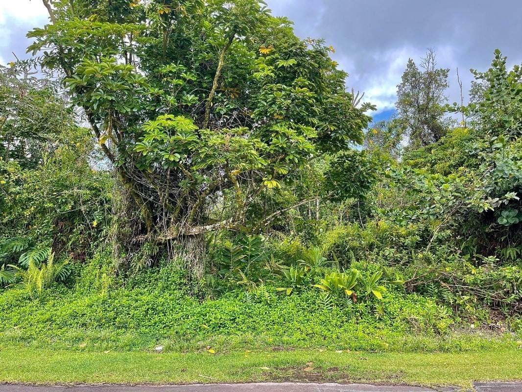 https://bt-photos.global.ssl.fastly.net/hawaii/orig_boomver_1_650878-2.jpg