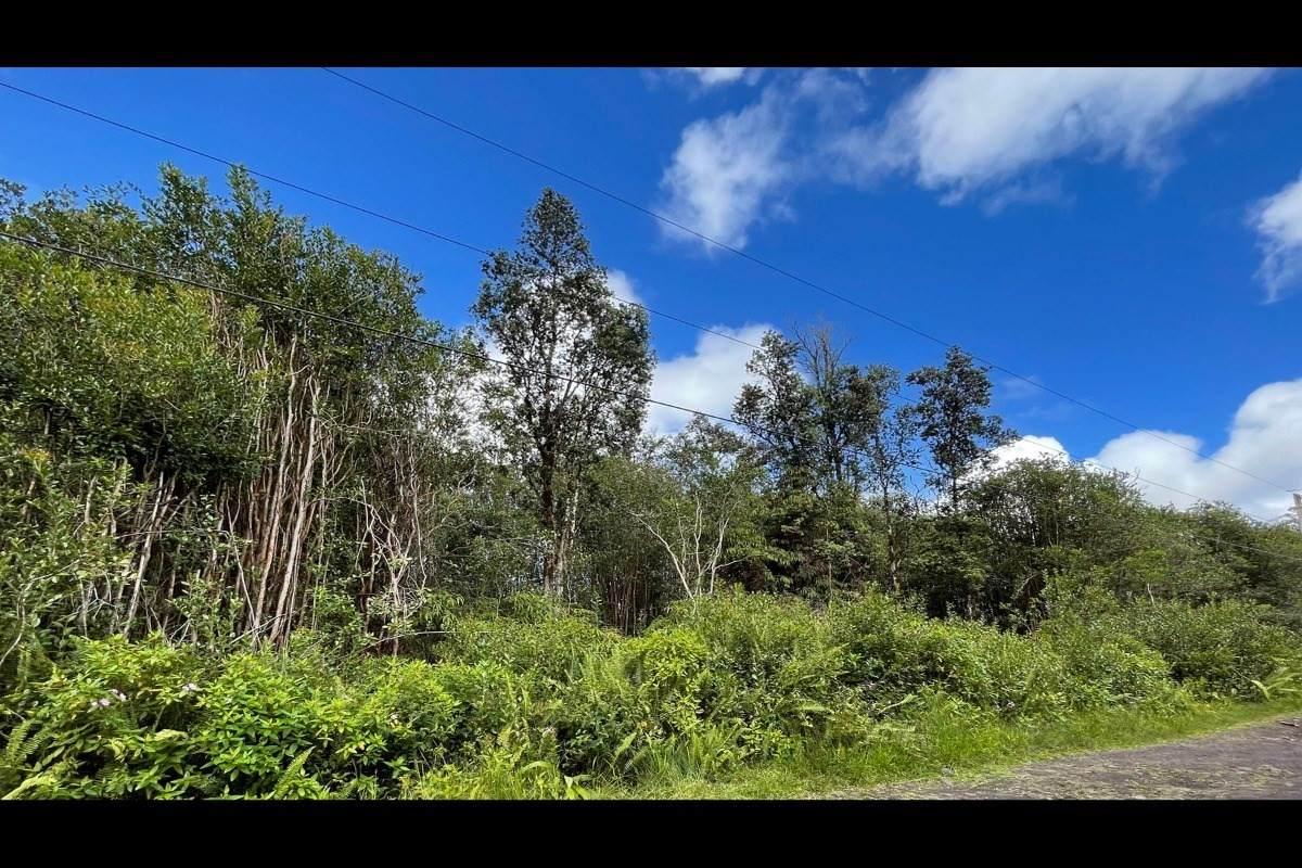 Opeapea Rd (Road 7) - Photo 1