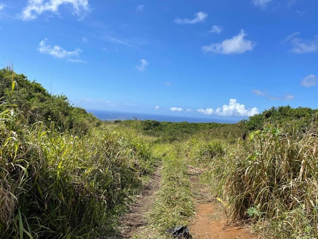 https://bt-photos.global.ssl.fastly.net/hawaii/orig_boomver_1_650957-2.jpg
