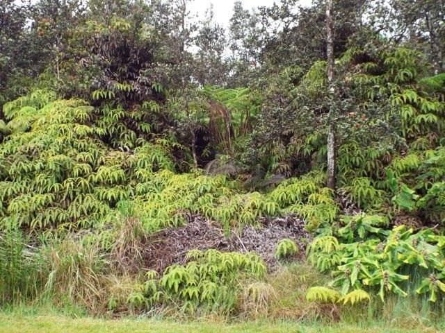 Liona St, Volcano, HI 96785 (MLS #651035) :: Aloha Kona Realty, Inc.