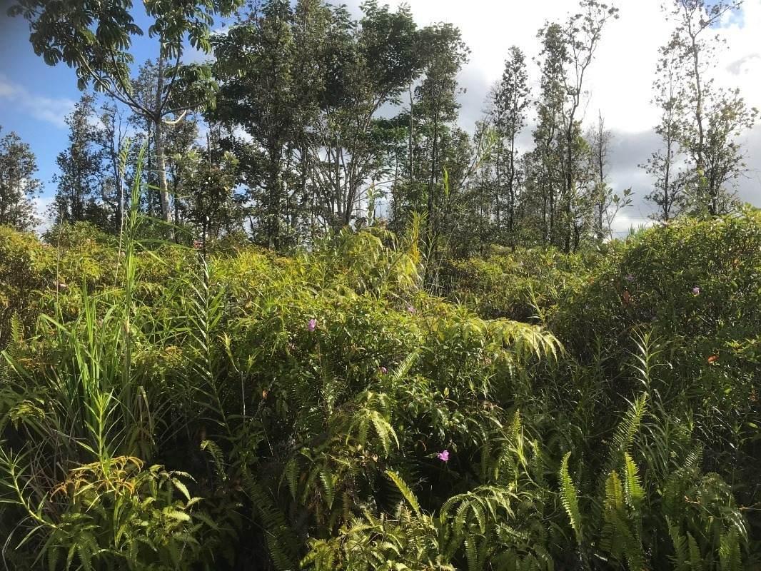 Aloha Dr - Photo 1