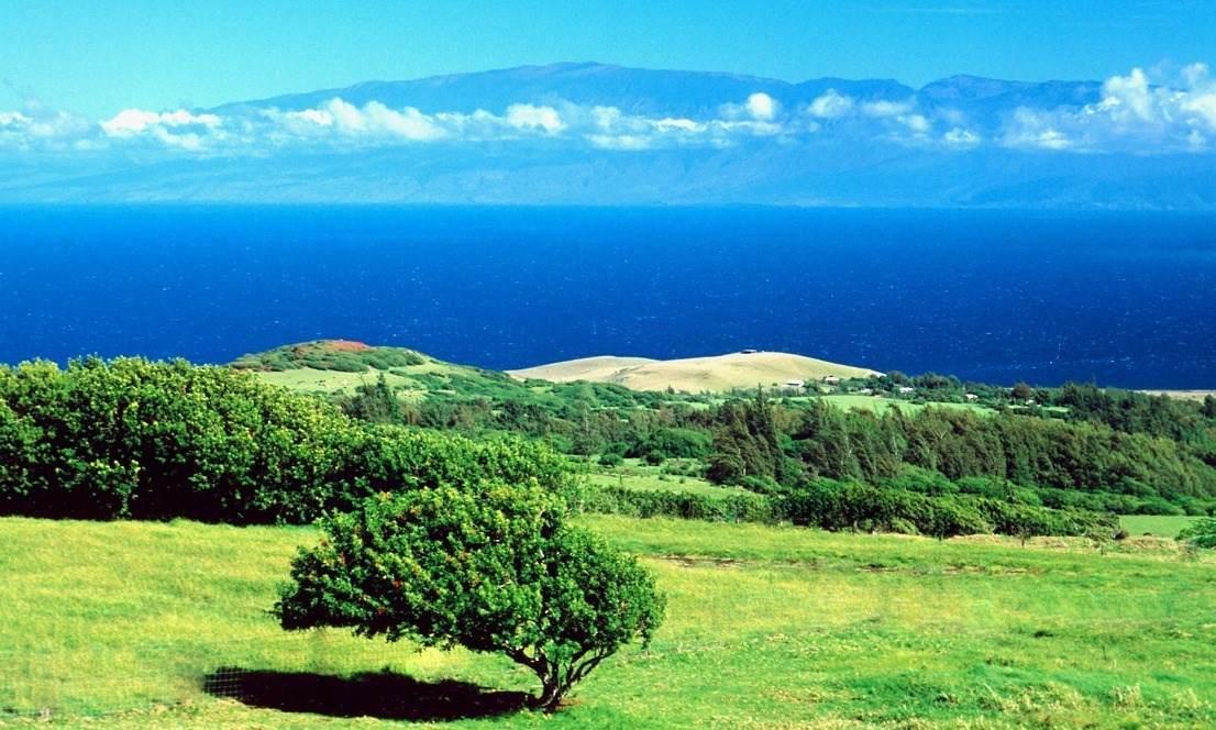 https://bt-photos.global.ssl.fastly.net/hawaii/orig_boomver_1_651047-2.jpg