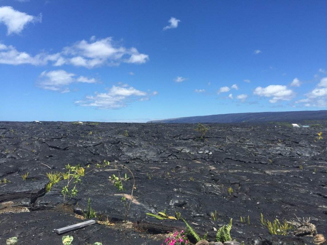 https://bt-photos.global.ssl.fastly.net/hawaii/orig_boomver_1_651317-2.jpg