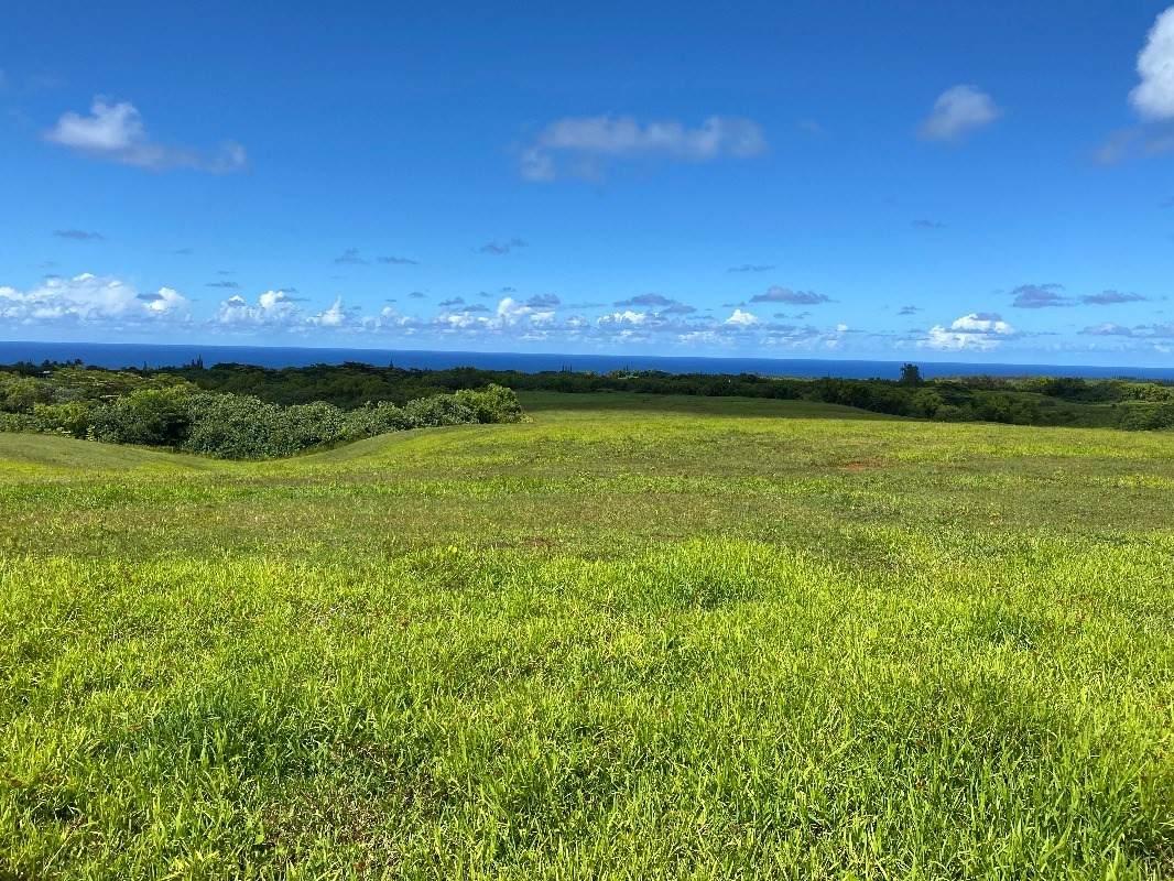 https://bt-photos.global.ssl.fastly.net/hawaii/orig_boomver_1_651347-2.jpg