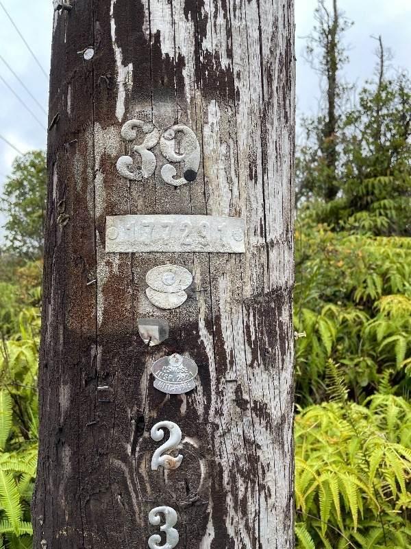 https://bt-photos.global.ssl.fastly.net/hawaii/orig_boomver_1_651416-2.jpg