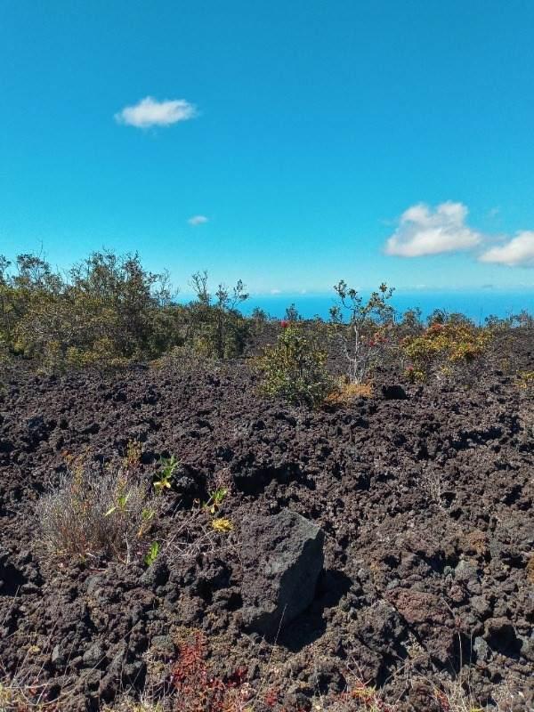 https://bt-photos.global.ssl.fastly.net/hawaii/orig_boomver_1_651526-2.jpg