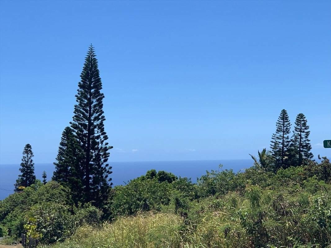 https://bt-photos.global.ssl.fastly.net/hawaii/orig_boomver_1_651599-2.jpg