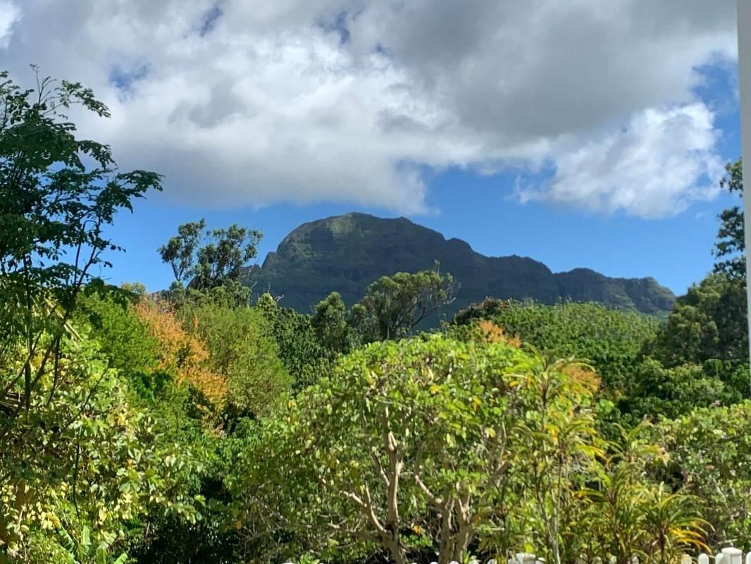 https://bt-photos.global.ssl.fastly.net/hawaii/orig_boomver_1_651673-2.jpg