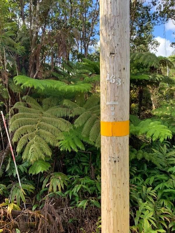 https://bt-photos.global.ssl.fastly.net/hawaii/orig_boomver_1_651708-2.jpg