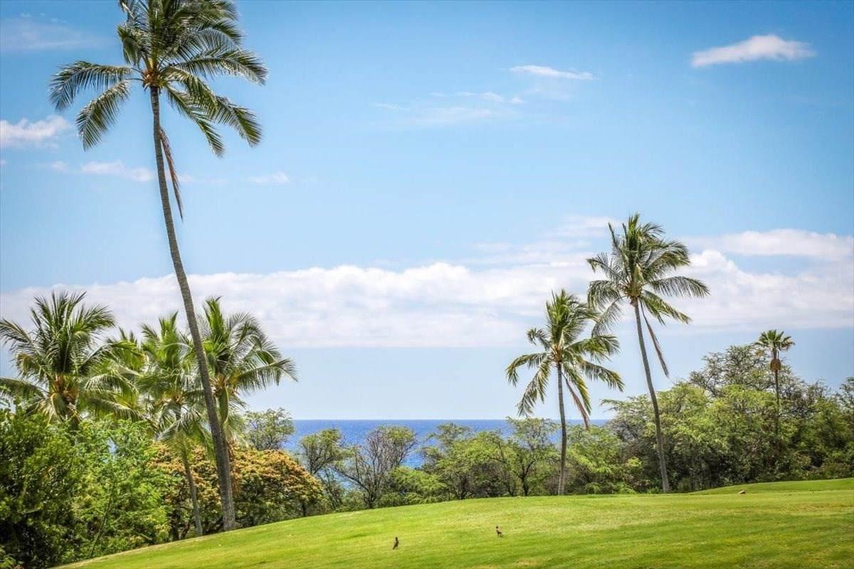 https://bt-photos.global.ssl.fastly.net/hawaii/orig_boomver_1_651873-2.jpg