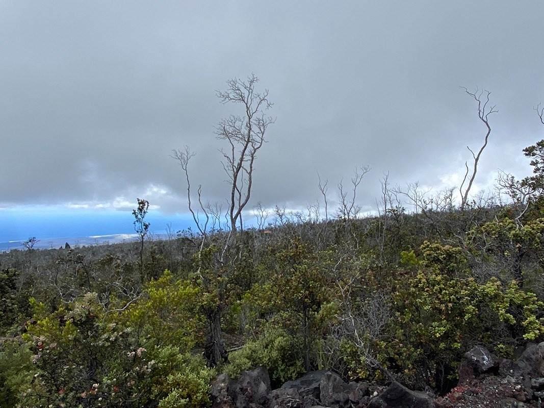 https://bt-photos.global.ssl.fastly.net/hawaii/orig_boomver_1_652024-2.jpg