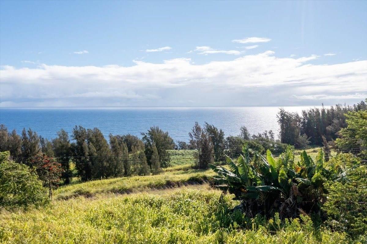 https://bt-photos.global.ssl.fastly.net/hawaii/orig_boomver_1_652025-2.jpg