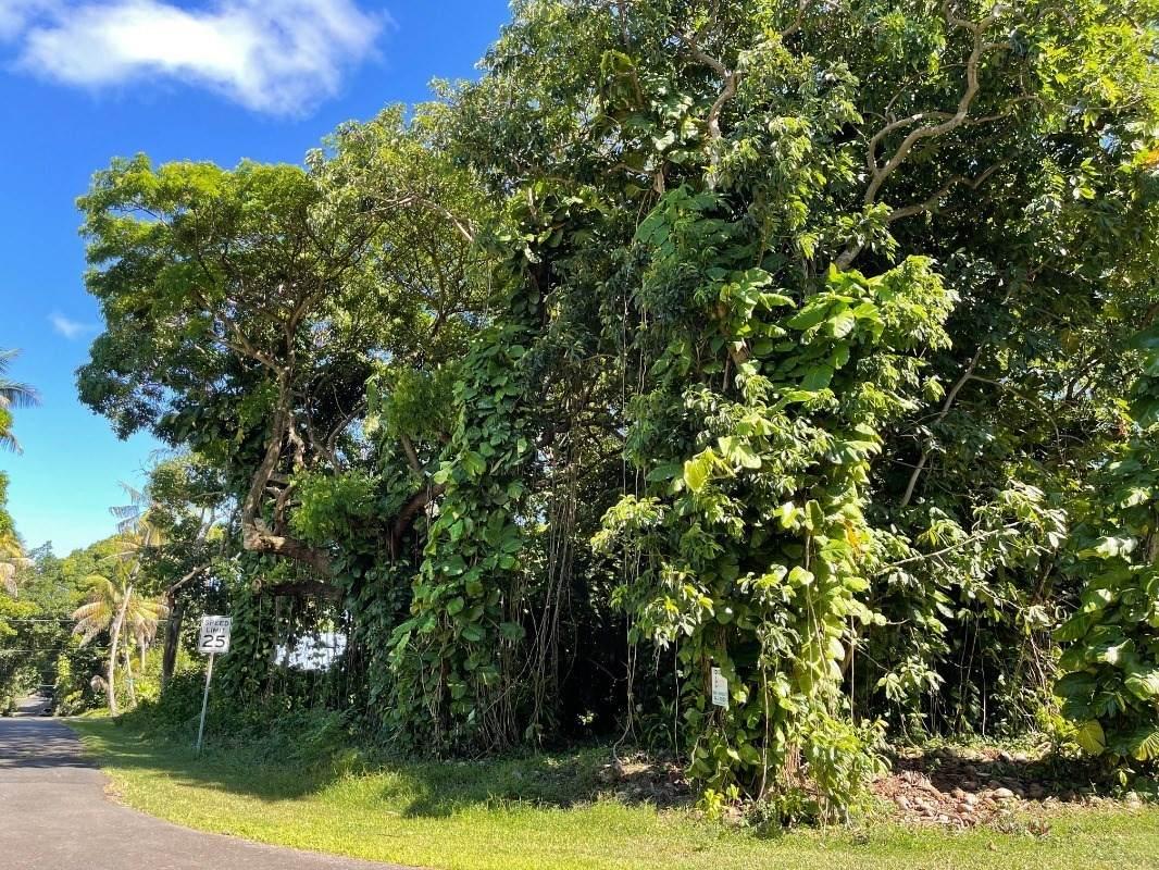 https://bt-photos.global.ssl.fastly.net/hawaii/orig_boomver_1_652146-2.jpg