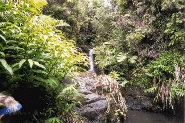 https://bt-photos.global.ssl.fastly.net/hawaii/orig_boomver_1_652165-2.jpg