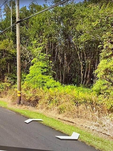 N Kulani Rd, Mountain View, HI 96771 (MLS #652365) :: LUVA Real Estate