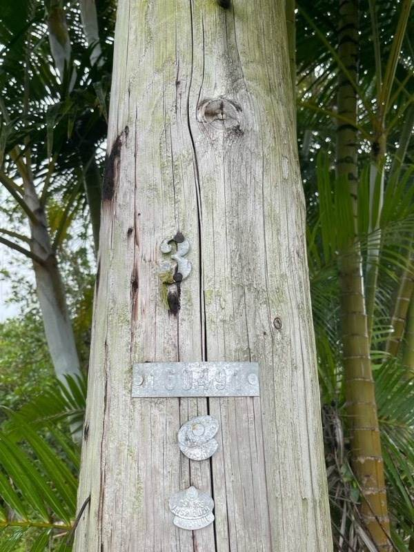 https://bt-photos.global.ssl.fastly.net/hawaii/orig_boomver_1_652421-2.jpg