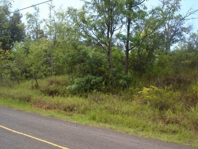 Keaka Pkwy, Ocean View, HI 96737 (MLS #652630) :: Aloha Kona Realty, Inc.